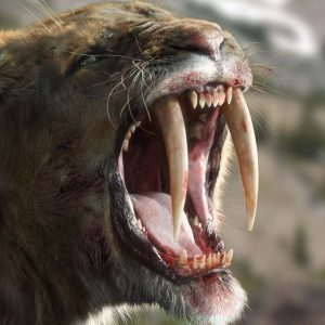 saber tooth tiger facts for kids